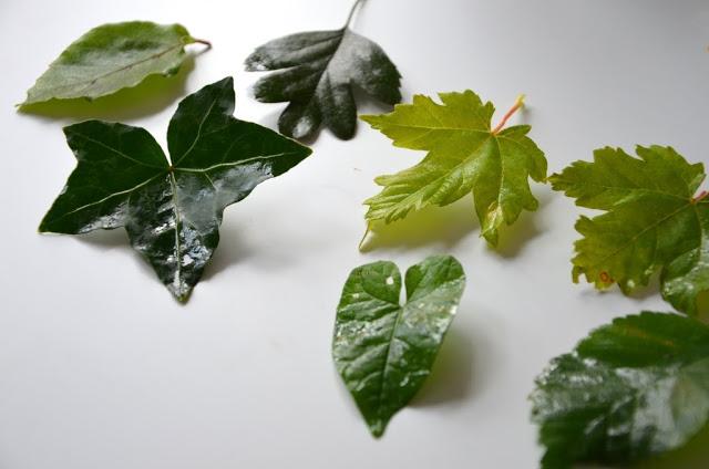Blandede blade