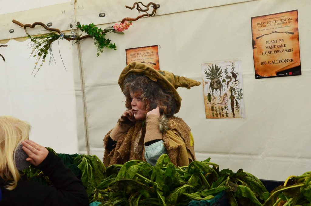 Harry Potter festival Professor Sprout